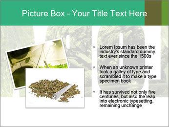 0000077387 PowerPoint Templates - Slide 20