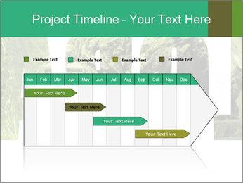0000077387 PowerPoint Templates - Slide 25