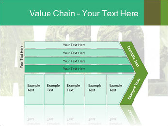 0000077387 PowerPoint Templates - Slide 27