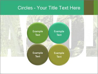 0000077387 PowerPoint Templates - Slide 38