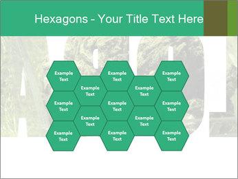 0000077387 PowerPoint Templates - Slide 44