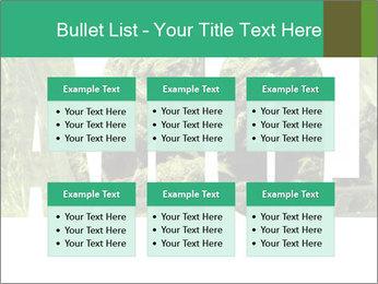 0000077387 PowerPoint Templates - Slide 56