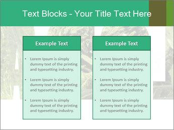 0000077387 PowerPoint Templates - Slide 57