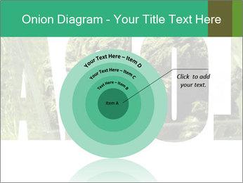 0000077387 PowerPoint Templates - Slide 61
