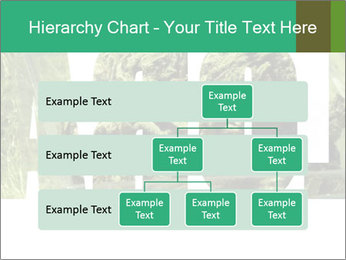 0000077387 PowerPoint Templates - Slide 67