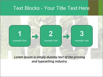 0000077387 PowerPoint Templates - Slide 71