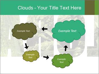 0000077387 PowerPoint Templates - Slide 72