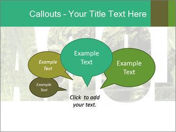 0000077387 PowerPoint Templates - Slide 73