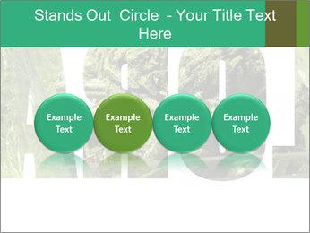 0000077387 PowerPoint Templates - Slide 76
