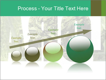 0000077387 PowerPoint Template - Slide 87