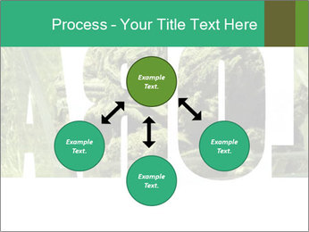 0000077387 PowerPoint Template - Slide 91