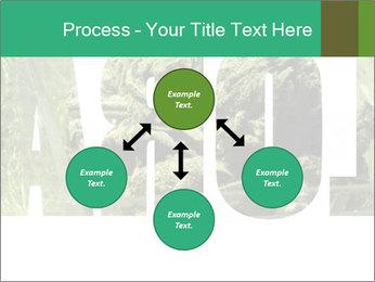 0000077387 PowerPoint Templates - Slide 91