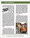 0000077390 Word Templates - Page 3