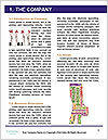 0000077391 Word Template - Page 3