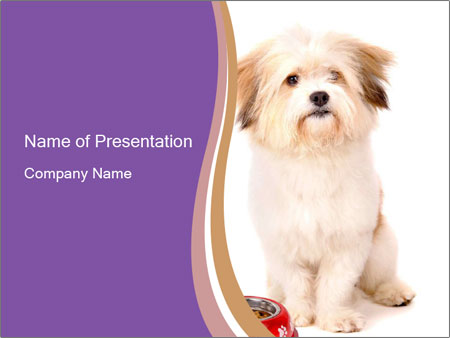 0000077395 PowerPoint Templates
