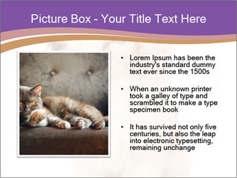 0000077395 PowerPoint Templates - Slide 13