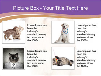 0000077395 PowerPoint Templates - Slide 14