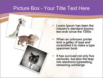 0000077395 PowerPoint Templates - Slide 17