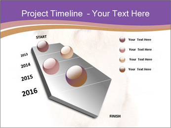 0000077395 PowerPoint Templates - Slide 26
