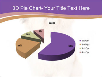0000077395 PowerPoint Templates - Slide 35
