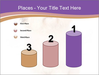 0000077395 PowerPoint Templates - Slide 65