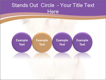 0000077395 PowerPoint Templates - Slide 76