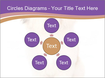0000077395 PowerPoint Templates - Slide 78