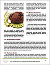 0000077399 Word Templates - Page 4