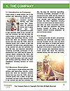 0000077407 Word Template - Page 3