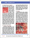 0000077413 Word Template - Page 3