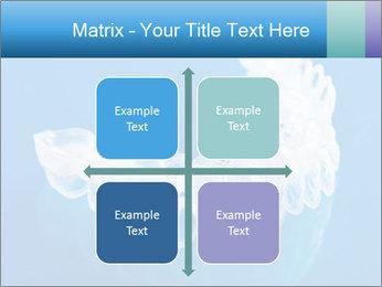 0000077416 PowerPoint Templates - Slide 37