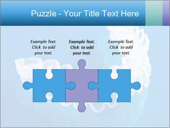 0000077416 PowerPoint Templates - Slide 42