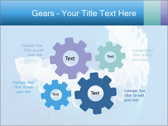 0000077416 PowerPoint Templates - Slide 47