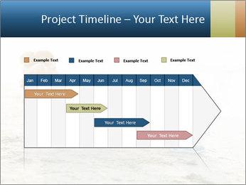 0000077420 PowerPoint Templates - Slide 25