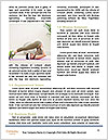 0000077420 Word Templates - Page 4