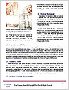 0000077425 Word Templates - Page 4