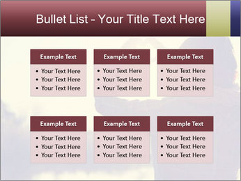 0000077427 PowerPoint Templates - Slide 56