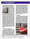 0000077428 Word Template - Page 3