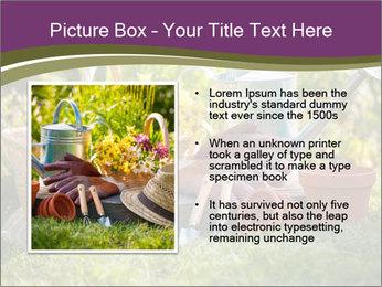 0000077438 PowerPoint Template - Slide 13