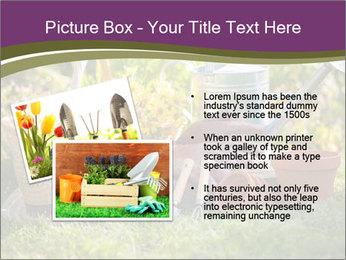 0000077438 PowerPoint Template - Slide 20