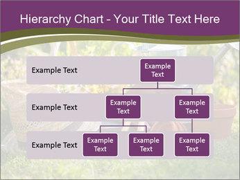 0000077438 PowerPoint Template - Slide 67