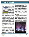 0000077444 Word Template - Page 3