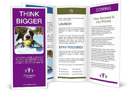 0000077445 Brochure Templates