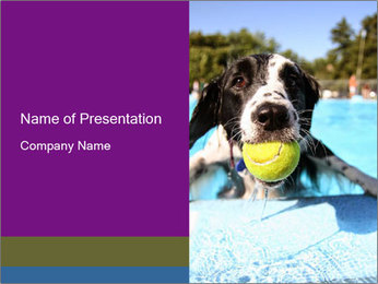 0000077445 PowerPoint Template - Slide 1