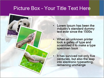 0000077445 PowerPoint Template - Slide 17