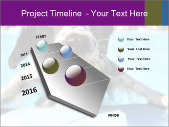 0000077445 PowerPoint Template - Slide 26