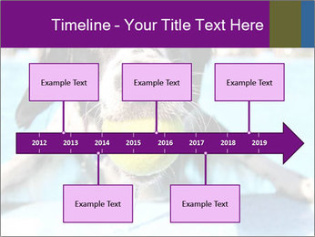 0000077445 PowerPoint Template - Slide 28