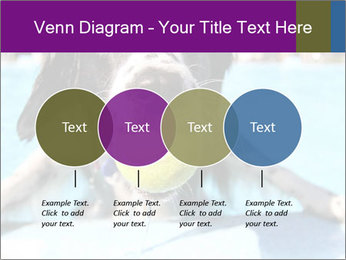 0000077445 PowerPoint Template - Slide 32