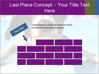 0000077445 PowerPoint Template - Slide 46