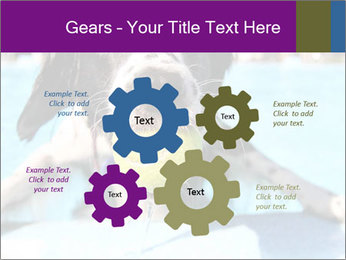 0000077445 PowerPoint Template - Slide 47